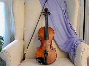 Картинки Музыкальные инструменты Скрипки