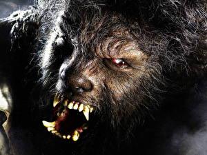 Картинки Человек-волк