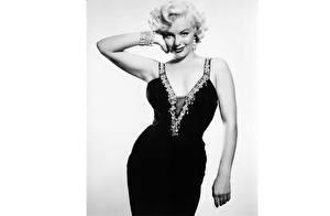 Фото Marilyn Monroe