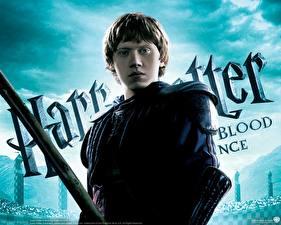 Фотография Гарри Поттер Гарри Поттер и Принц-полукровка Rupert Grint кино