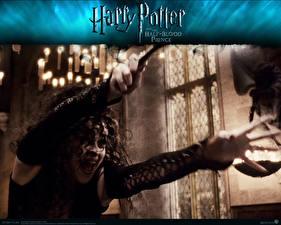 Фотография Гарри Поттер Гарри Поттер и Принц-полукровка