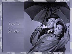 Фотография Зонт Singin in the Rain Фильмы