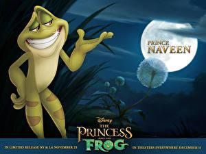 Обои Disney Принцесса и лягушка