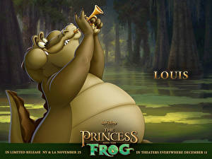Фотография Дисней Принцесса и лягушка Мультики