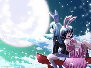 Картинки Bunnygirl Ушки кролика Аниме
