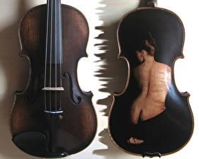 Картинка Музыкальные инструменты Виолончель