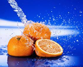 Фотография Фрукты Цитрусовые Апельсин