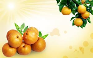 Картинка Фрукты Цитрусовые Апельсин Продукты питания