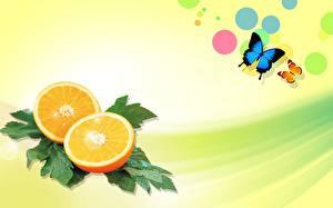 Фотографии Фрукты Цитрусовые Апельсин