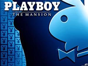 Фотографии Playboy