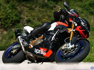 Обои Aprilia Мотоциклы фото