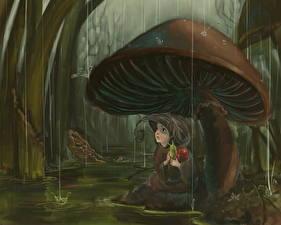 Картинка Грибы природа Фэнтези