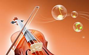 Фотографии Музыкальные инструменты Скрипка