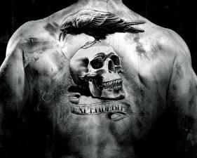 Картинки Неудержимые Черепа Спина Татуировки
