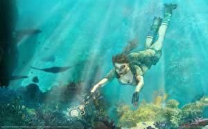 Фотография Tomb Raider Tomb Raider Anniversary Лара Крофт Игры