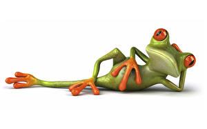 Фото Лягушка Белом фоне 3D Графика Животные
