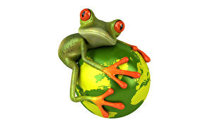 Картинка Лягушка Белый фон 3D Графика Животные