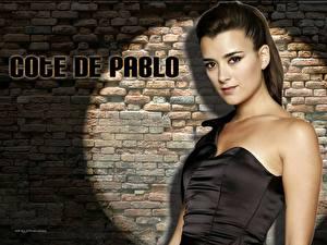 Картинка Cote De Pablo Знаменитости