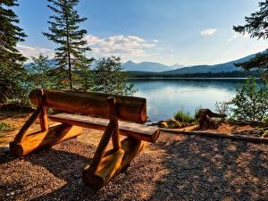 Картинка Канада Парки Скамья Джаспер парк Природа