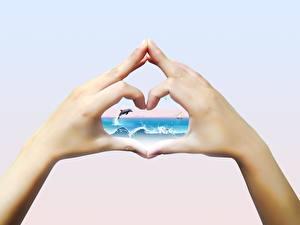 Обои Креатив Пальцы Руки Сердце фото