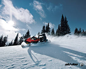 Фотографии Снегоход Снегу Спорт