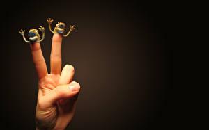 Обои Пальцы игрушки на пальцах Юмор фото