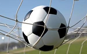 Фотография Футбол Спортивная сетка Мяч спортивные