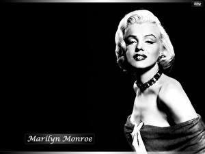 Обои Marilyn Monroe