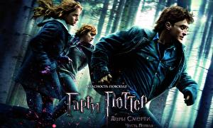 Фотографии Гарри Поттер Гарри Поттер и Дары Смерти Daniel Radcliffe Emma Watson Руперт Гринт Кино