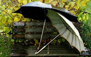 Обои Зонт Скамейка
