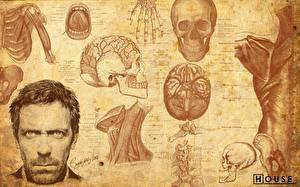 Картинки Доктор Хаус Hugh Laurie Фильмы