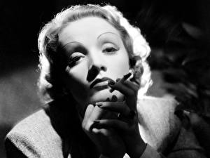 Картинки Marlene Dietrich