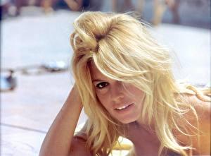 Фотография Brigitte Bardot Знаменитости