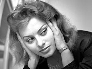 Фото Sophia Loren Знаменитости