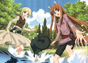 Обои Spice and Wolf Аниме