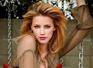 Картинки Amber Heard