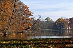 Обои Парки Мюнхен Германия Озеро Nymphenburg park Природа