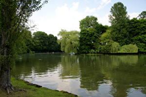 Обои Озеро Германия Мюнхен English Garden lake Природа