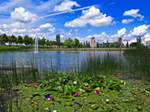 Обои Парки Мюнхен Германия Пруд Природа