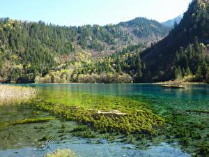 Обои Озеро Китай Цзючжайгоу парк Valley Panda Lake Природа фото