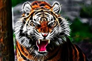 Картинки Тигры Большие кошки Взгляд Злость Морда Зубы 3D Графика Животные