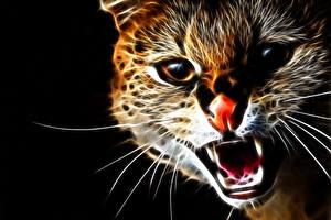Фото Коты Глаза Взгляд Оскал Морда Зубы Нос 3D Графика Животные