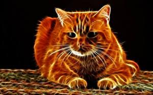 Обои Коты Усы Вибриссы Смотрит Морды 3D Графика Животные