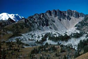 Фотография Парки Горы Штаты Маунт-Рейнир парк Washington