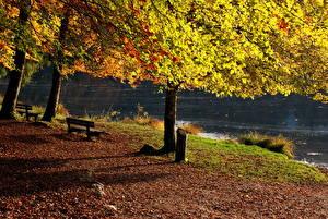 Картинки Времена года Осень Скамейка Франция Бонльё Природа