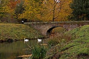 Картинки Река Англия Барнсли Дистрикт Природа