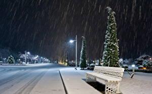 Фото Сезон года Зимние Дороги Снег Скамейка В ночи Уличные фонари Природа