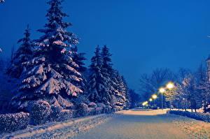 Картинка Времена года Зимние Дороги Снег Ночь Деревья Природа