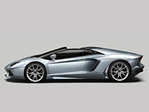 Картинка Lamborghini Роскошные Родстер Aventador Roadster