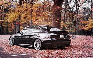 Картинки BMW Времена года Осень Черных Листва авто